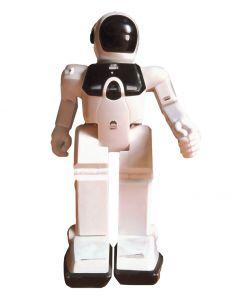 Fun Robots